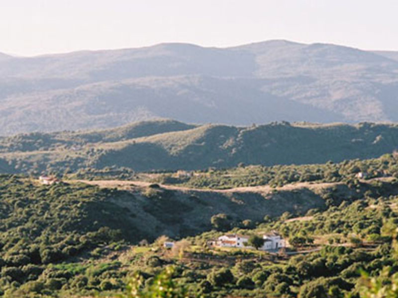 An image of La Hoya in its surroundings